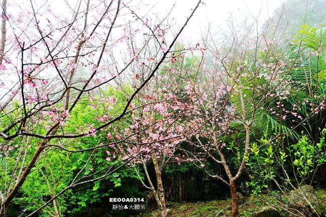 DSC04548_副本.jpg