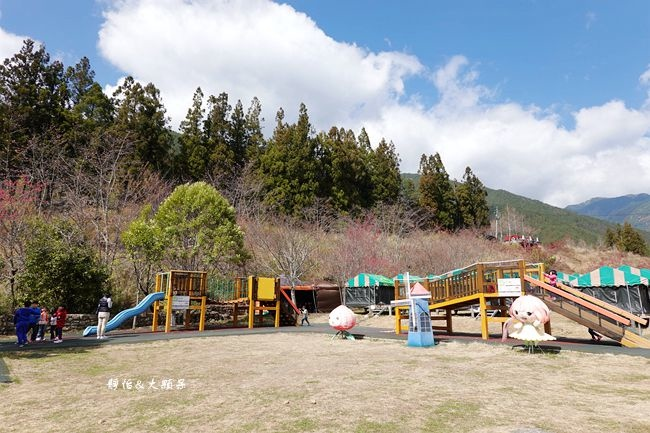 DSC08837_副本.jpg
