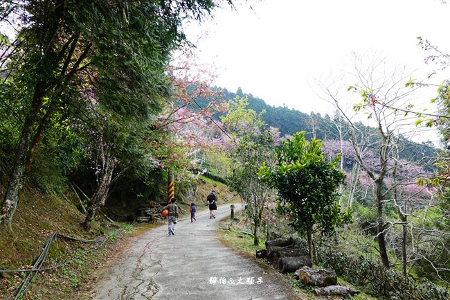 DSC01466_副本.jpg