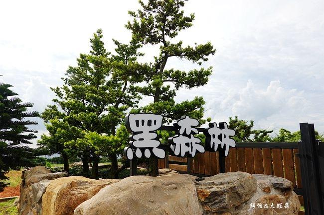 DSC03820_副本.jpg