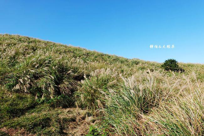 DSC02043_副本.jpg