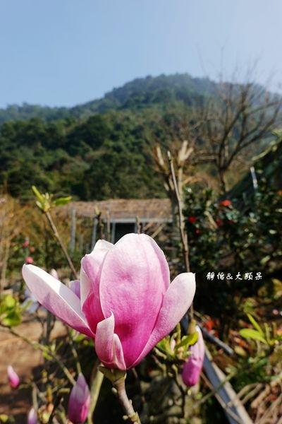 DSC01926_副本.jpg