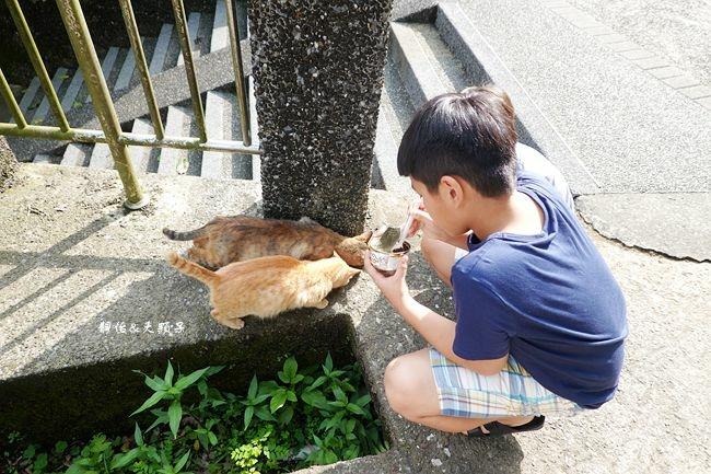 DSC09434_副本.jpg