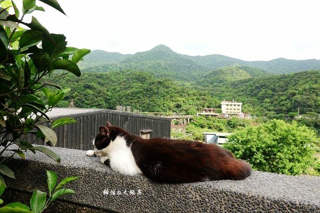 DSC09465_副本.jpg