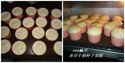 香草牛奶杯子蛋糕03