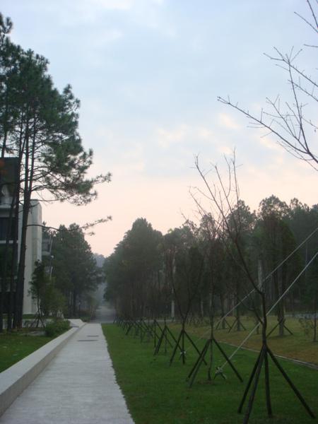 Day2的清晨 ~很冷, 空氣很乾淨的早晨~
