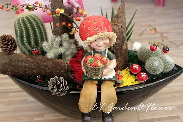 仙人掌組合盆栽