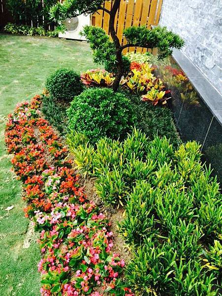 庭園景觀5