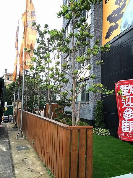 庭園景觀9