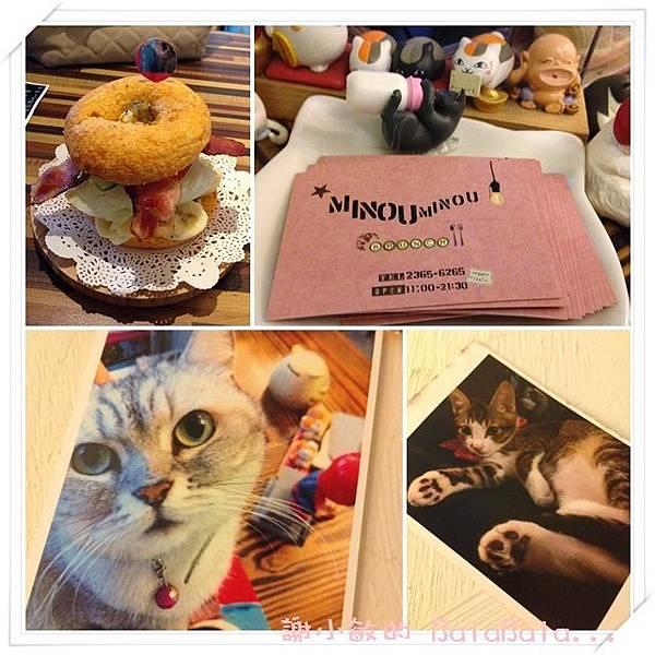 cats90.jpg
