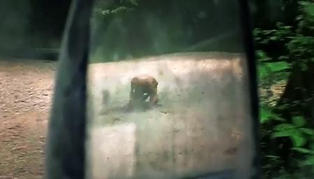 (行屍走肉S07E01.mp4)[00.45.38.jpg