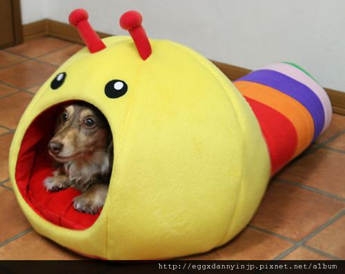 寵物用品~毛毛蟲造型寵物窩[日本大阪在地代買、代購、代標-Egg X Danny in jp]