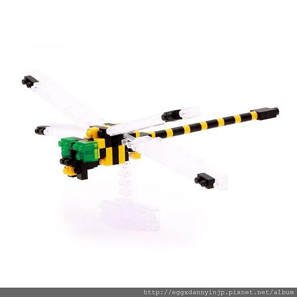nano block小積木-蜻蜓