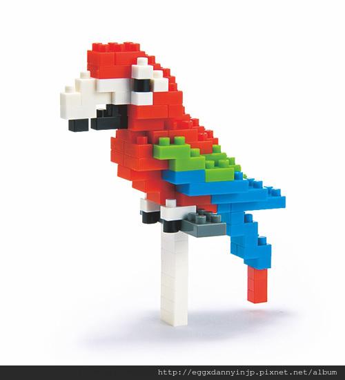 nano block小積木-金剛鸚鵡