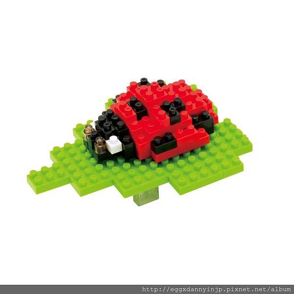 nano block小積木-瓢蟲