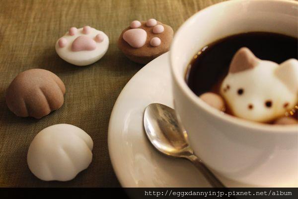 貓咪棉花糖