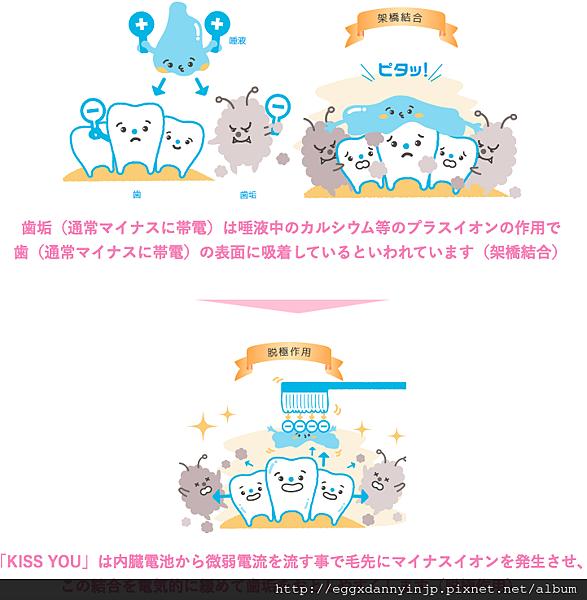 【日本藥妝心得分享】- Kiss You利用負離子清除齒垢的牙刷-10.png