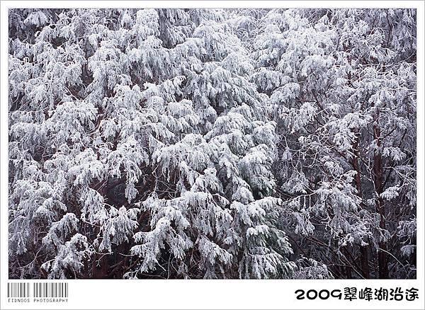 翠峰湖半日遊23