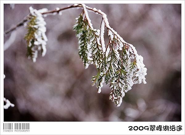 翠峰湖半日遊28