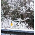 翠峰湖半日遊31