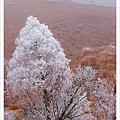 翠峰湖半日遊36