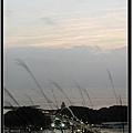 Kodak_250D-04