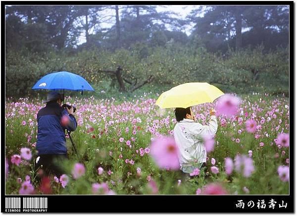 07中秋福壽山