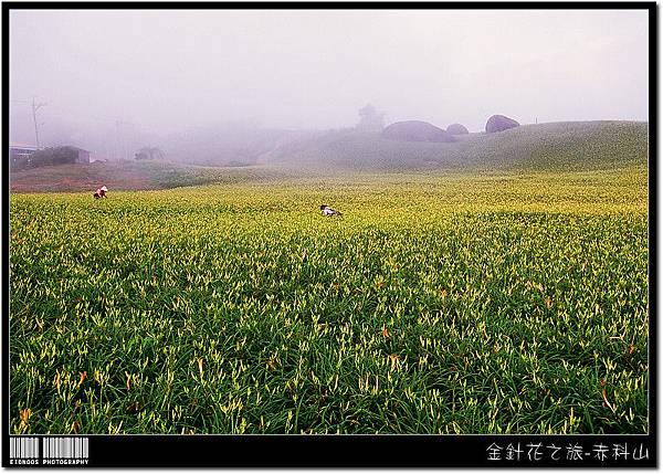 赤科山RVP100F02m