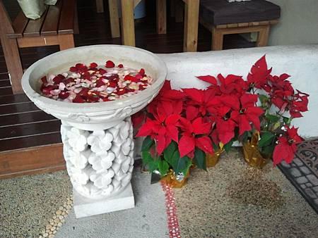 2011-12-25 12.51.44.jpg