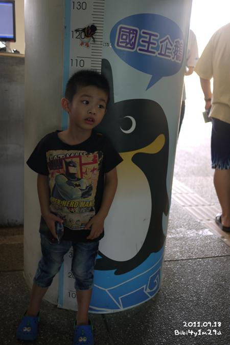 20110918_20.jpg