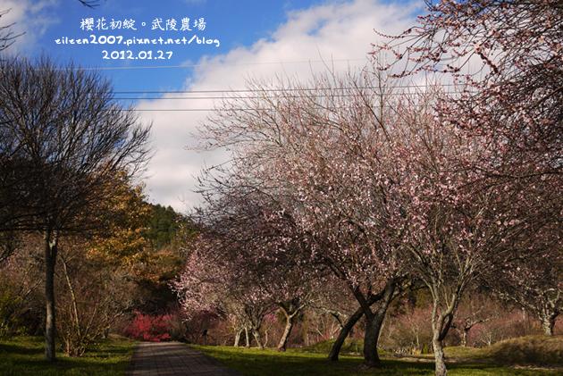 20120127_00.jpg