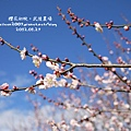 20120127_13.jpg