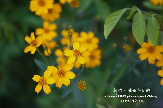 20141214_10.jpg