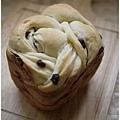 20141023_bread00.jpg