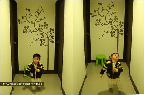 980425_tree02.jpg