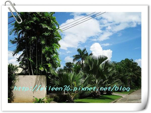 菲律賓0040.jpg
