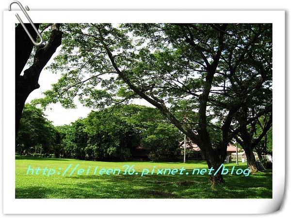 菲律賓0093.jpg