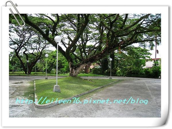 菲律賓0102.jpg
