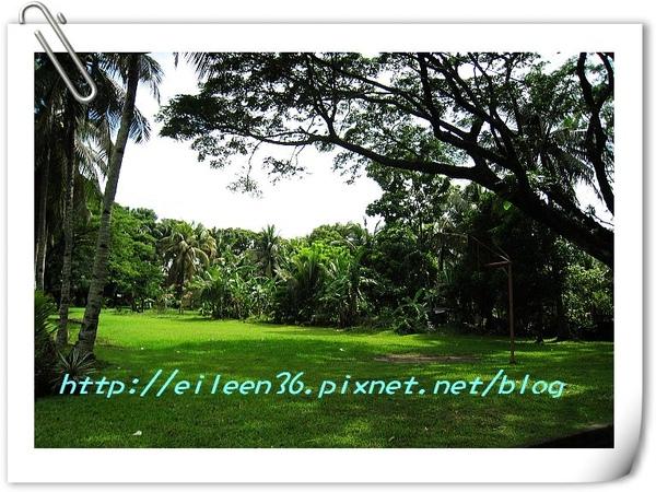 菲律賓0115.jpg