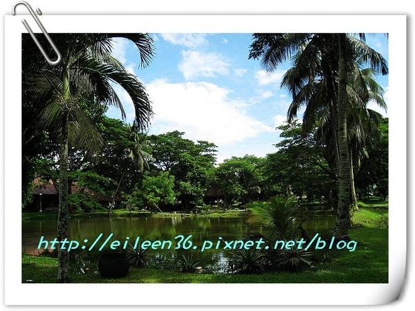 菲律賓0116.jpg