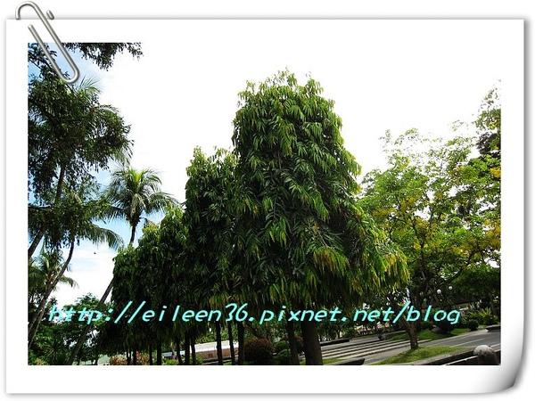 菲律賓0357.jpg