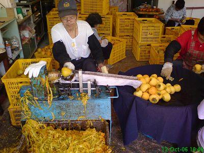 用機器削柿子皮的阿伯