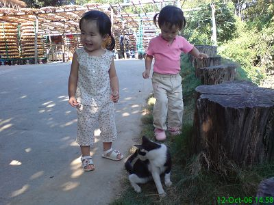 小柚子&小小妞&小貓咪一起玩