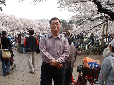 武藏小金井的櫻花也很盛開唷