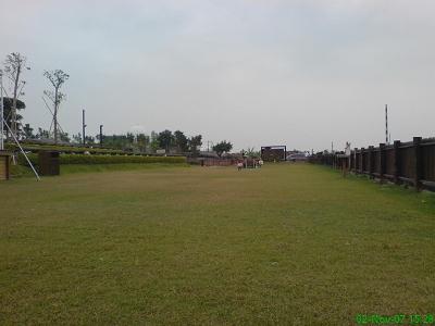 寬闊的草地