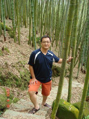 竹林裡的步道
