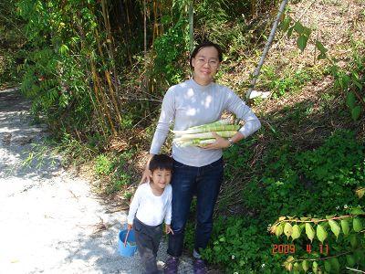 香嫩的貴竹筍