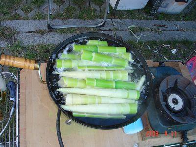 燙熟貴竹筍