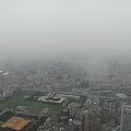 20100530 101登高賽2010_0154.JPG