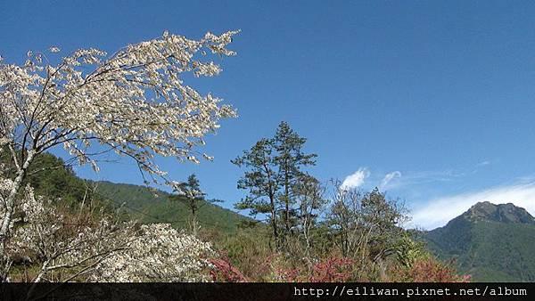 20120304武陵307